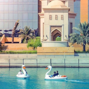 Swan Paddle Boat Ride - attractions