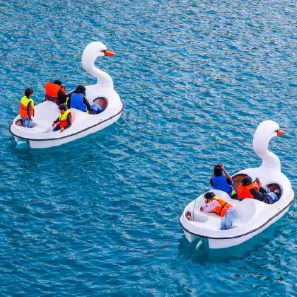 Swan Pedal  - attractions